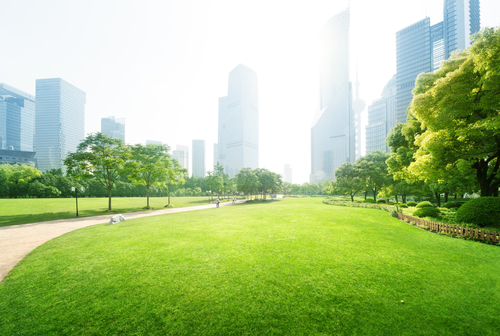 Picture of BYOB to Sister Cities Park for Summer Series