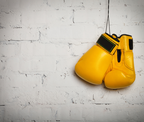 Picture of Get Fit and Have Fun at this New Boxing Gym