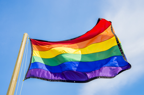 Picture of Philly Pride to Mark Big Anniversary